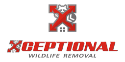 Xceptional Wildlife Marketing