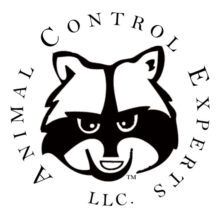 Animal Control Experts Advertising